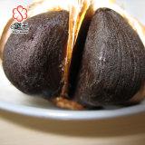 Heiße Verkaufs-Qualitäts-koreanischer schwarzer Knoblauch 500g