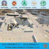 Het Waterdicht makende die Membraan van de kelderverdieping van HDPE Blad wordt gemaakt