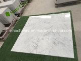 24X24 естественного белого каррарского мрамора плитки, мойки каррарского мрамора белого цвета