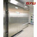 冷蔵室のための引き戸かマニュアルまたは媒体タイプ