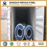 La grande qualità ha galvanizzato la bobina d'acciaio con la galvanostegia 60g