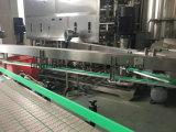 Het Vullen van het Mineraalwater van de Fles van het huisdier de Automatische Bottelende Machine van de Apparatuur