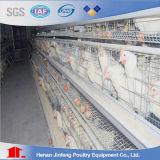 Gabbie di uccello automatiche del pollo del pollame di alta qualità calda per il pollo da carne di strato