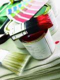 """색칠 공구 2 """" 자연적인 순수한 강모 및 플라스틱 손잡이를 가진 페인트 붓"""