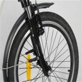 Pedal unterstütztes faltendes elektrisches Fahrrad En15194 (RSEB-107)