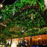 Green Panneaux suspendus au plafond