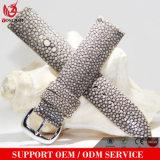 Cinta de relógio luxuosa dos homens ou das mulheres do couro do Stingray Yxl-757 com a curvatura do aço inoxidável