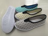 Último projeto mulheres sapatos de lona Injecção Calçado de lazer (FZL712-17)