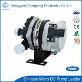 24V DC 휴대용 자동차 전자 수도 펌프