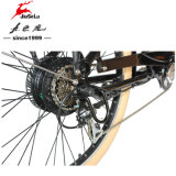 "26 "" Aluminum Alloy Frame European Market Electric City Bicycle (JSL037S - 10)"