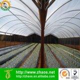 Película agricultural preta plástica do PE da alta qualidade com resistente UV