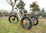 500W 3車輪の電気自転車