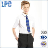 Royal Private Primary School Uniform for Boy