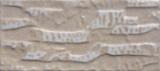 azulejo esmaltado exterior de cerámica 112X255m m de la pared de 112X255 milímetro