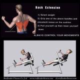 背部拡張適性装置の体操のボディービルの練習機械