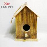 Jerarquía de madera modificada para requisitos particulares del pájaro de la dimensión de una variable para la venta