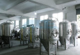 1000L Brewhouse pour micro brasserie l'équipement, Brewhouse set-up (l'ACE-FJG-J5)