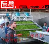 Fruta comerciales industriales de secado de hortalizas de la máquina de deshidratación botella