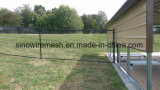 PVC Revestido Chain Link Fence Wire Mesh Fencing