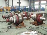 Scatola ingranaggi planetaria personalizzata del motore idraulico