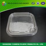De plastiek Scharnierende Doos van de Verpakking van de Bakkerij van het Deksel