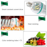 5W Spiral Glass LED Corn Bulbs Lights