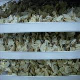 Dyer de congelamento de vácuo e vegetais