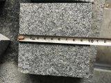 Cheap Priceの普及したG654 Padang Dark Granite
