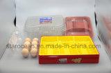 Tellersegment des Kunststoffgehäuse-Nahrungsmitteltellersegment-PVC/Pet/PP