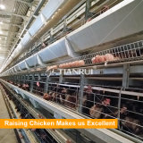 최신 판매 저가 자동적인 닭 층 감금소 시스템