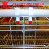 Автоматическая система клетки батареи цыплятины фермы клетки слоя цыпленка