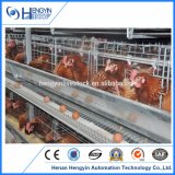 De goedkopere Kooi van de Kip van de Vogel van de Dag van de Grill van het Ei van de Laag van het Gevogelte Oude