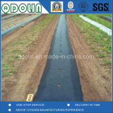 Gewebe 100% angeben Polypropylen Spunbond Vliesstoff-