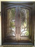 Portas de entrada superiores redondas do ferro feito do projeto luxuoso com vidro