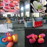 De plastic Extruder die van het Netwerk van het Fruit van het Schuim EPE Netto Machine maakt