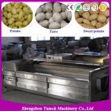 식물성 과일 청소와 감자 당근 생강 세탁기 및 Peeler
