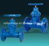 무쇠 또는 연성이 있는 철 탄력있는 자리가 주어진 게이트 밸브