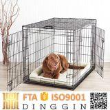 Französische Bulldogge-Haustier-Hundehaus