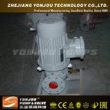 Pompe de circulation de servocommande d'eau chaude d'ISG