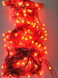 Lichten van het onzichtbare Lichte Koord van de Hoofd fee van de Partij de Rode