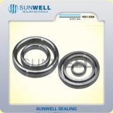 Gaseket metallico/guarnizione Octagonal della giuntura dell'anello