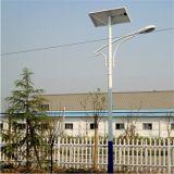 8m 60W 0utdoor brazo único foco LED Solar de Aldea de la luz de la Calle Jardín