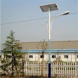 8m 60W Solar LED Street Light (BDSSL-023)