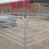 Comitati portatili d'acciaio del cavallo galvanizzati vendita calda da vendere
