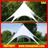 Progettare il Gazebo per il cliente della tenda della stella con il marchio per l'evento esterno