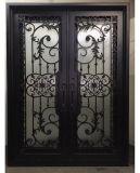 Современные двери из кованого железа утюг запись со стеклянной двери