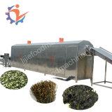 Máquina vegetal do secador do ar quente do rizoma
