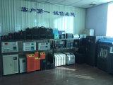 200W Systeem van de ZonneMacht van gelijkstroom het Draagbare