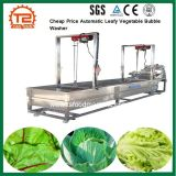 Cheap Price Automatic Leafy Vegetable Bubble Washer for Dirty