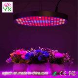 LED de Agricultura Vertical crescer todo o espectro de luz LED no painel 50W Luzes crescer